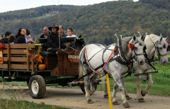 Hayrides - Hackettstown, NJ
