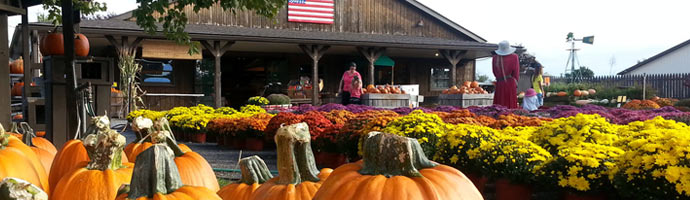 Donaldson Farms Farm Market (Hackettstown, NJ)