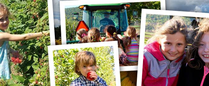 Field Trips at Donaldson Farms - Hackettstown, NJ